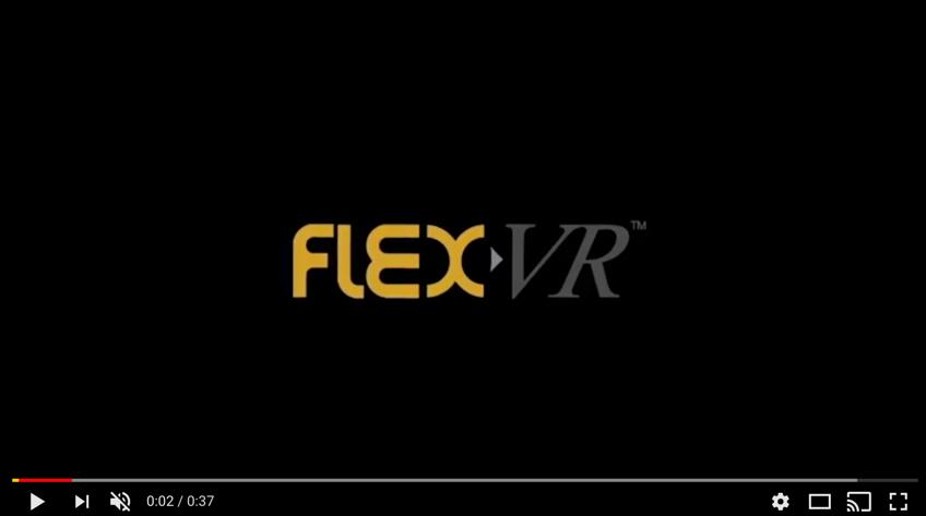 flexvrimage